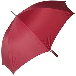 "[DEMO] All-Weather 48"" Polyester Auto Open Umbrella"
